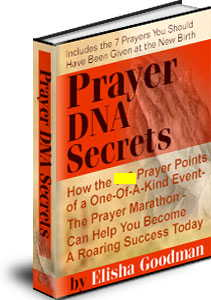 Prayer dna secrets 659 prayers to take you to the top you dont risk a penny by doing this fandeluxe Images