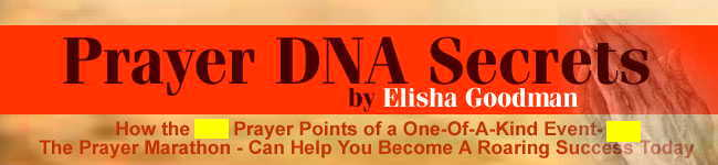 Prayer DNA Secrets- 659 prayers to take you to the top